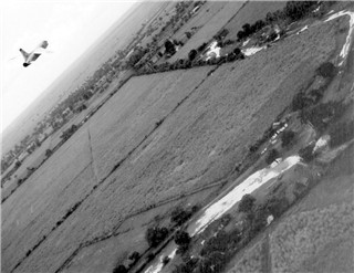 Click photo to enlarge. RF8 over Cuba